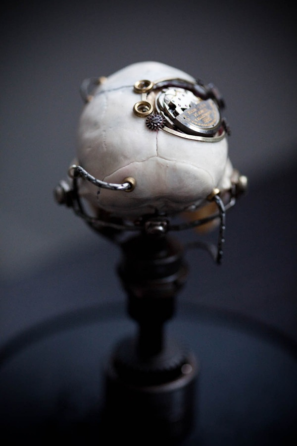 543381265605534 thumb Extreme Steampunk Beyond the Grave Terminal Techno Taxidermy