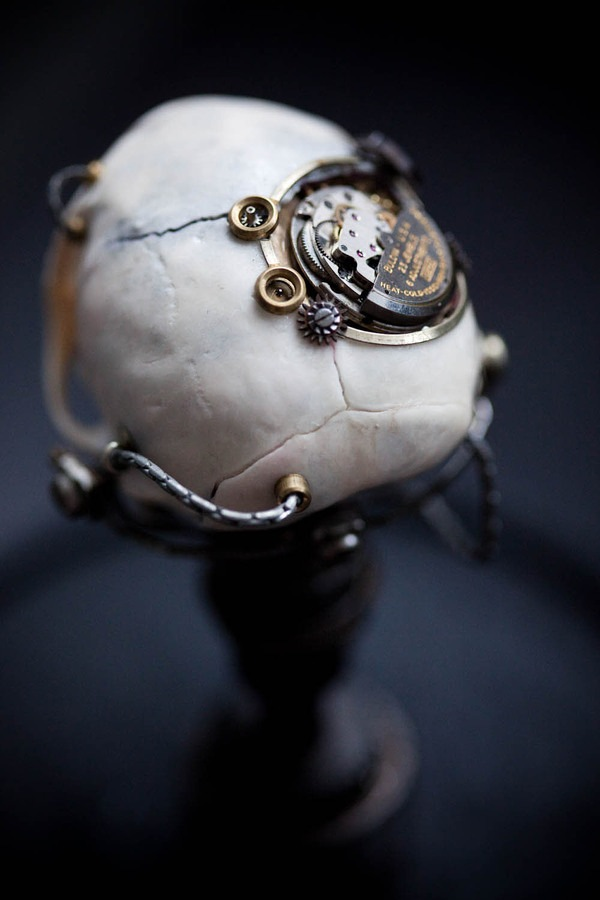 543381265605555 thumb Extreme Steampunk Beyond the Grave Terminal Techno Taxidermy