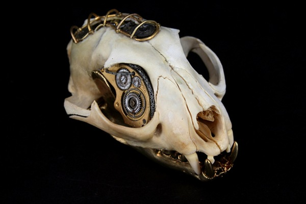 543381271025369 thumb Extreme Steampunk Beyond the Grave Terminal Techno Taxidermy