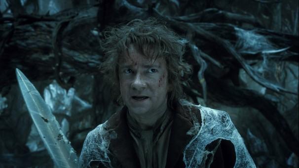 The Hobbit: Desolation of My Feelings