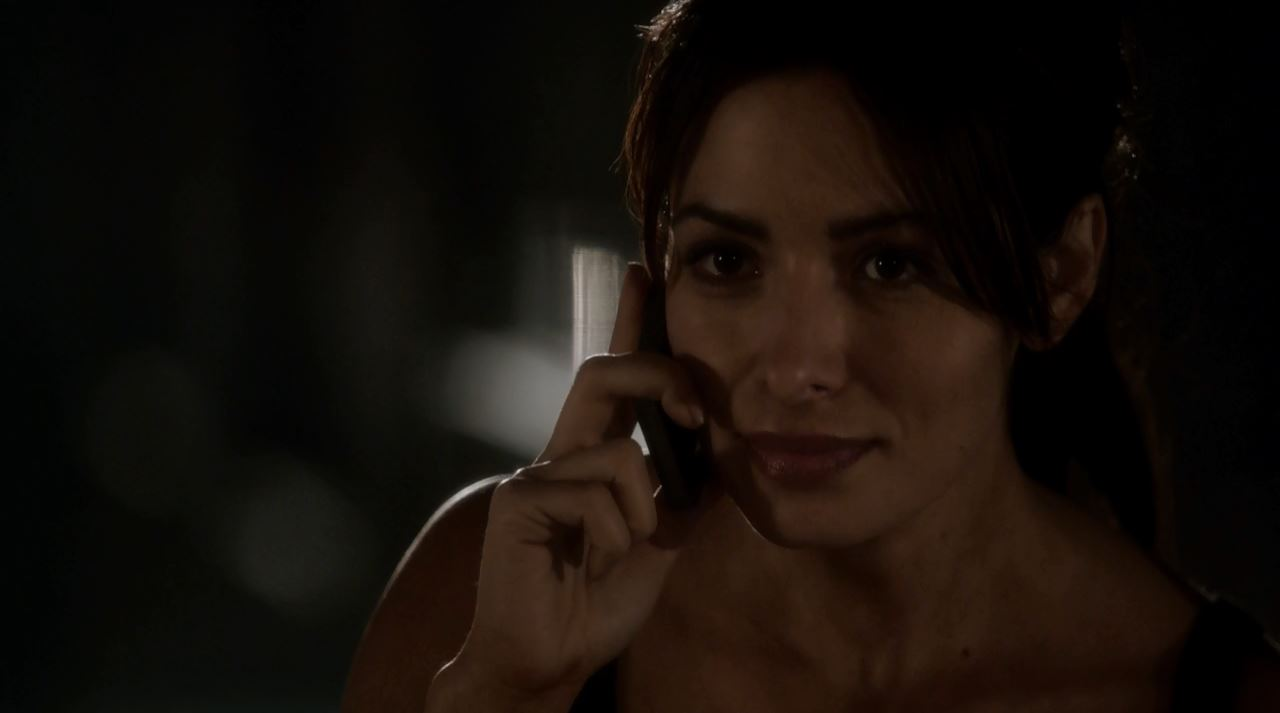 Sarah Shahi as Shaw - Person Of Interest S4Ep2 Nautilus Review