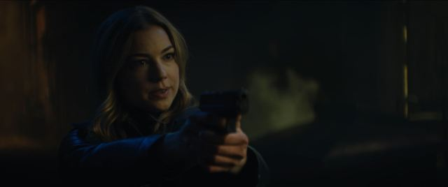 Sharon Carter played by Emily VanCamp