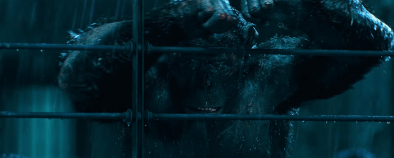 War of the Planet of the Apes (493)