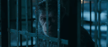 War of the Planet of the Apes (499)