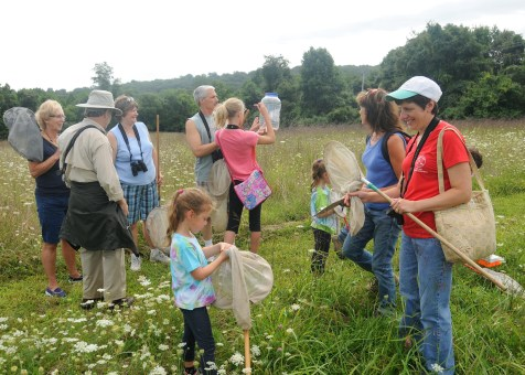 Identifying insects and arthropods during a bioblitz at Middle Run Natural Area in Delaware. Photo credit: https://blog.delawarenaturesociety.org/tag/bio-blitz/