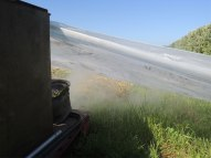 Smoke is pumped under the polythene