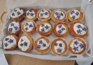 Borage flower cupcakes