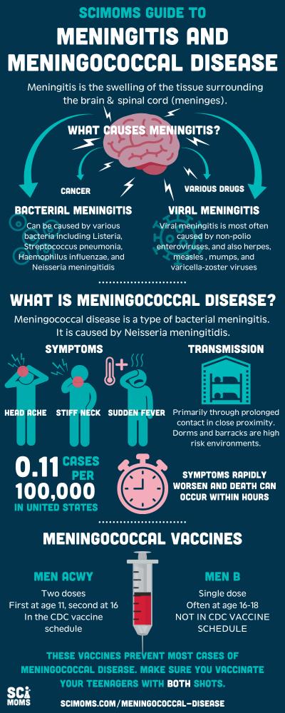 Infographic: SciMoms guide to meningitis and meningococcal disease. Causes of meningitis. Definition of meningococcal disease. Meningococcal vaccines.