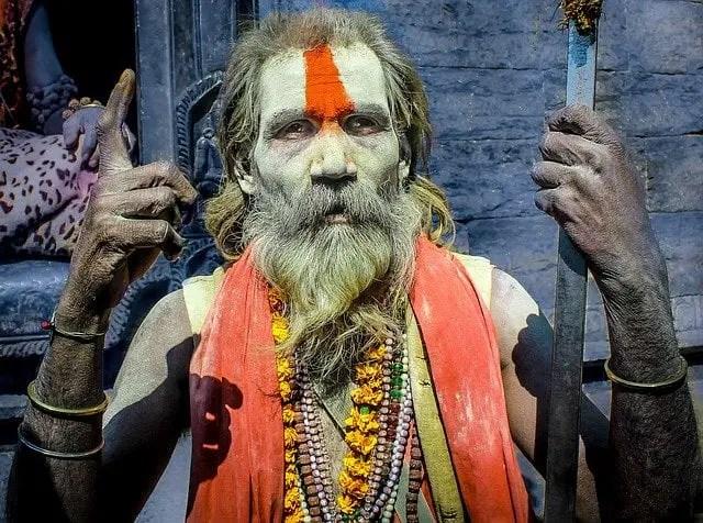 himalayan yogi saying who is hindu