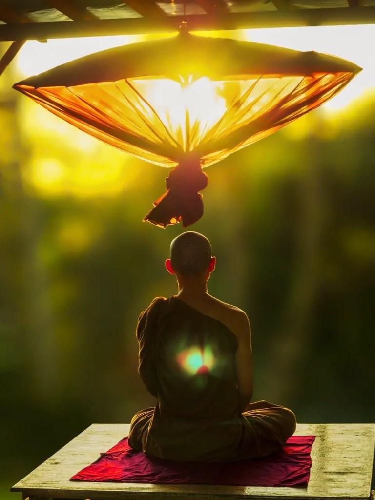 scientific monk 10