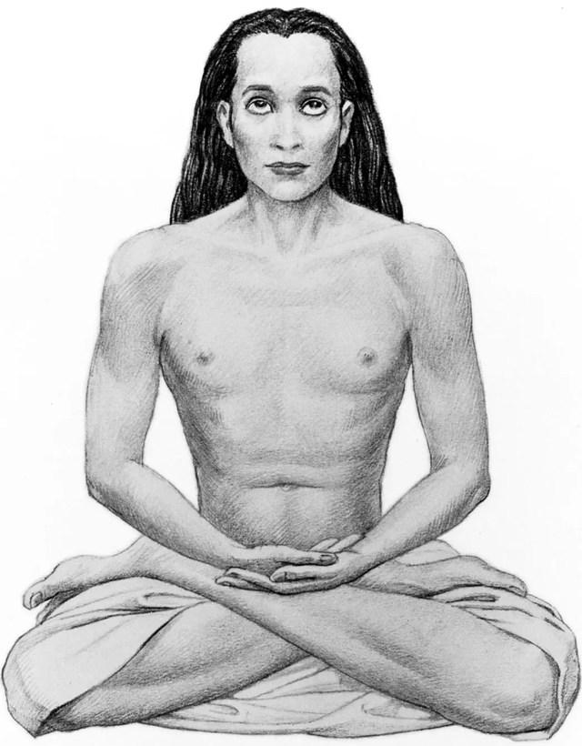 babaji, a great himalayan yogi