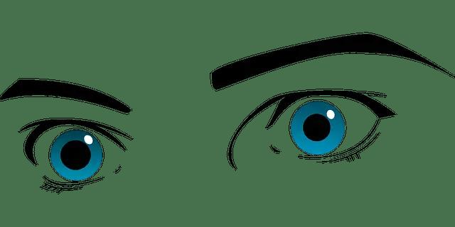 the observer's eyes