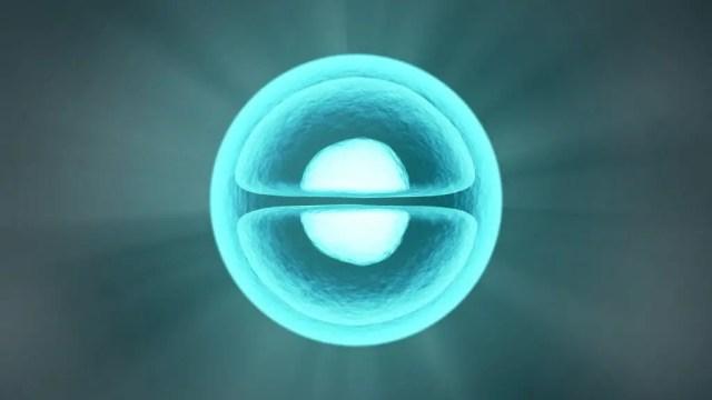 Molecule Symmetry