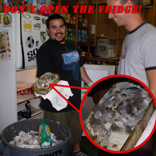 dont-open-the-fridge