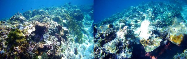 PCAARRD South China Sea reefs