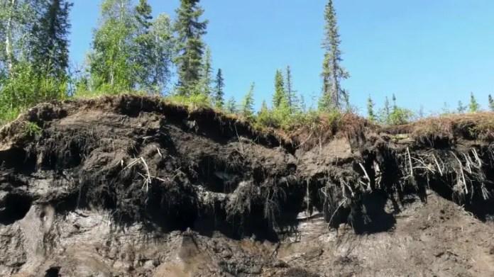 Аляскинская вечная мерзлота