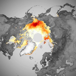 The Long, Critical Decline of Arctic Floating Ice