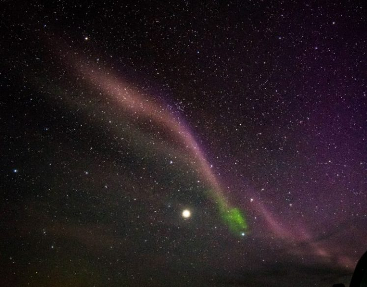 Citizen Astronomers Solve Mystery of Purple Lights in Sky