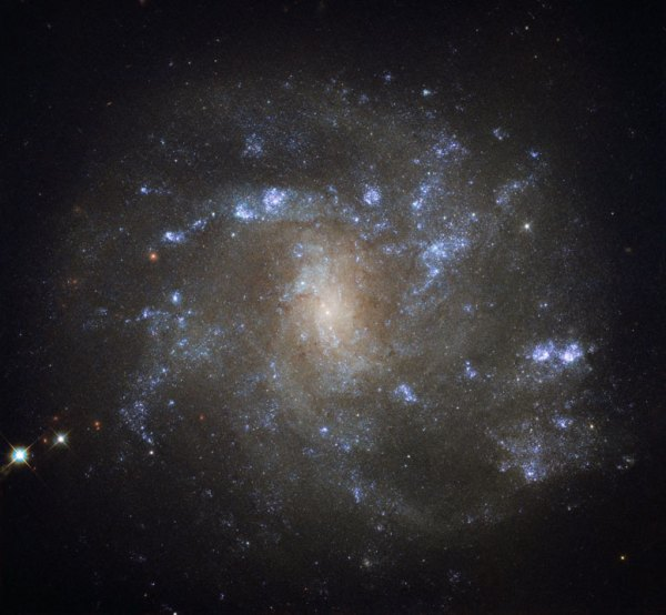 Hubble Space Telescope Views Spiral Galaxy NGC 2500