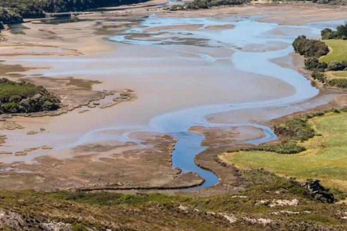 Muddy Estuary