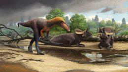 New 3 Foot Tall Relative of Tyrannosaurus Rex