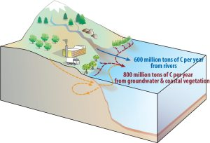 Twice as much carbon flowing from land to ocean than previously thought – 900-1 900 million tonnes a year