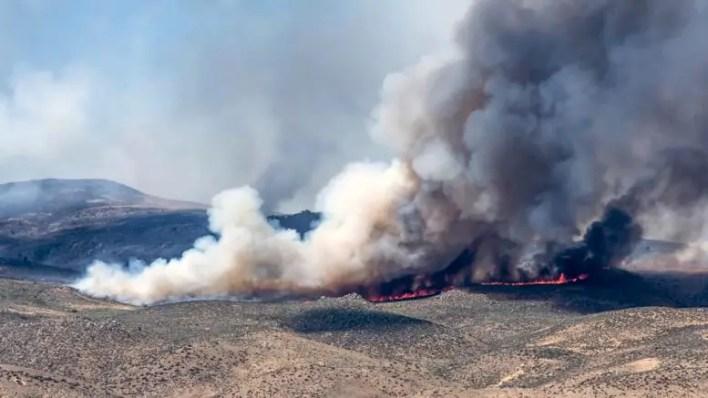 Patagonya Bozkırında Orman Yangınları