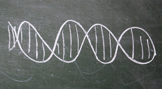 genome-sequence-ion-proton