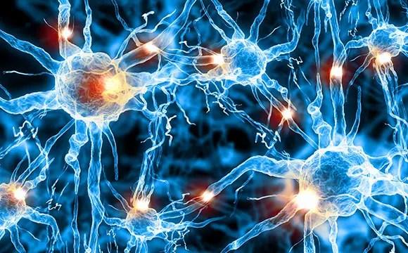 New Drug to Quiet Brain, Relieve Epilepsy and Tinnitus