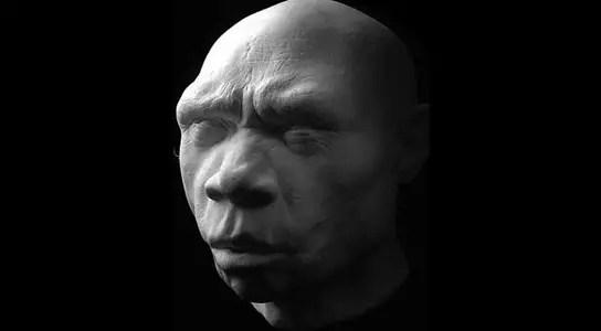 reconstruction-homo-heidelbergensis