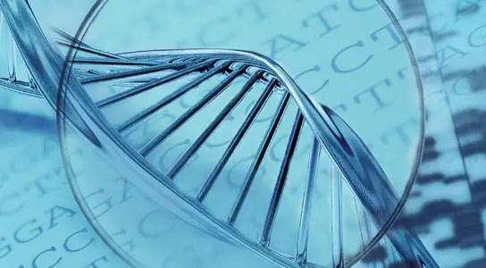 single-cell-genomics-efficient