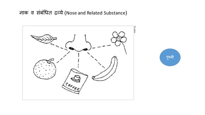 f2c84-noseandsubstance