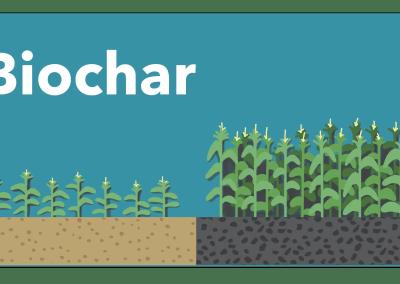Biochar