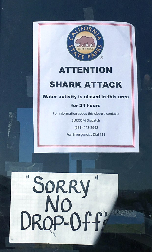 San Onofre State Beach remains closed after a woman was attacked by a shark in the area Saturday afternoon. (Photo by Laylan Connelly, Orange County Register/SCNG)