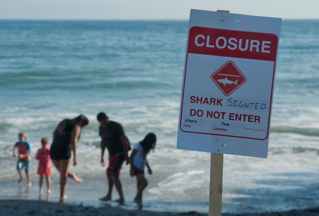 Beachgoers play along the edge of the water after lifeguards closed the beach at San Clemente's Main Beach due to several great white shark sightings on Sunday, May 21, 2017.Photo By Jeff Antenore, Contributing Photographer