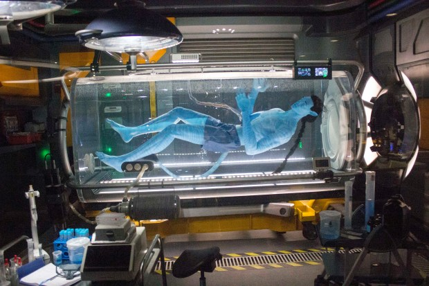 "An ""Avatar"" for a ""Na'vi,"" that would enable a human to seemingly walk among the native inhabitants of the moon of Pandora is created in this lab, as depicted in Pandora: The World of Avatar - a 12-acre area at Disney's Animal Kingdom theme park in Florida. (Photo by Mark Eades, Orange County Register/SCNG)"