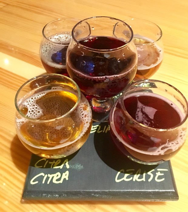 Find fruit forward sours, as well as some riffs on classic ales at Hoparazzi in Anaheim. (Nancy Luna, Orange County Register/SCNG)