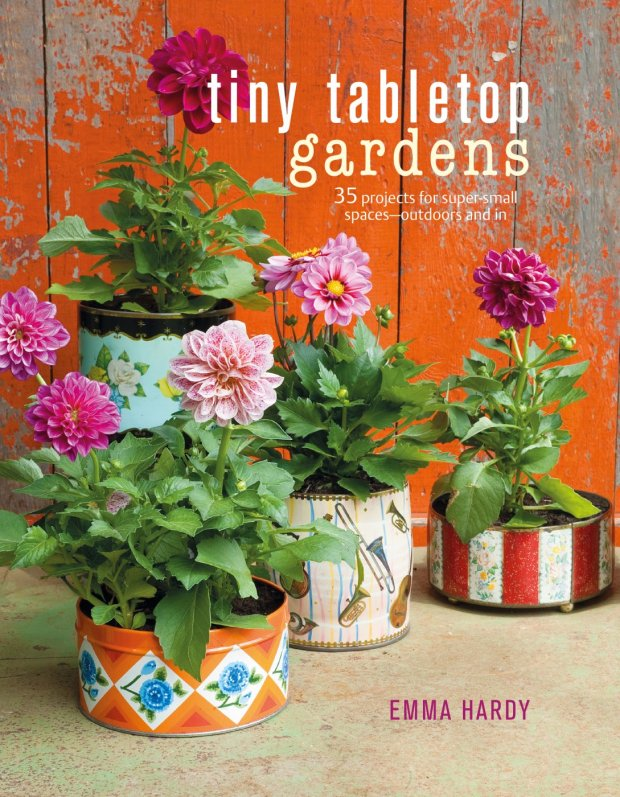 """Tiny Tabletop Gardens,"" by Emma Hardy (Courtesy of CICO Books)"