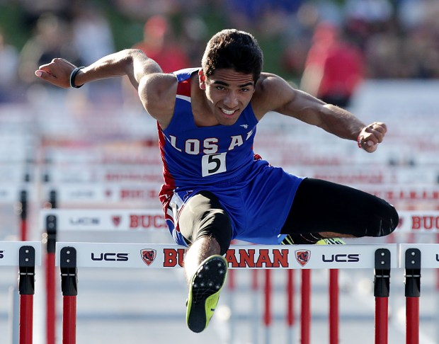 Los Alamitos' Jose Rubio competes i the 110 hurdles during prelims of the CIF-State track & field finals at Buchanan High in Clovis, CA. Friday, June 2, 2017. TERRY PIERSON,THE PRESS-ENTERPRISE/SCNG