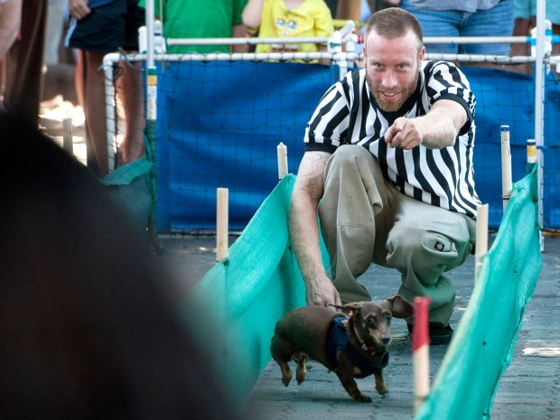 Dachshund races are the main event during German Heritage Day at Old World Village in Huntington Beach. (File photo by Kyusong Gong, The Orange County Register/SCNG)