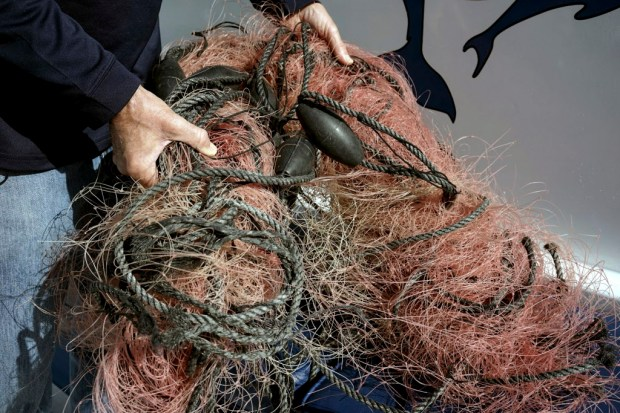 FILE - In this Nov. 30, 2015, file photo, Capt. David Anderson of Captain Dave's Dolphin and Whale Watching Safari in Dana Point, Calif., shows a net a whale was found entangled in. The Trump administration on Monday, June 12, 2017, threw out a new rule intended to limit the numbers of endangered whales and sea turtles getting caught in fishing nets off the West Coast, even though the fishing industry had proposed the measure. (AP Photo/Christine Armario, File) ORG XMIT: FX203