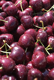 Hood River Cherries are sweeter and plumper than the usual varieties. (Courtesy of Hood River Cherry Company)