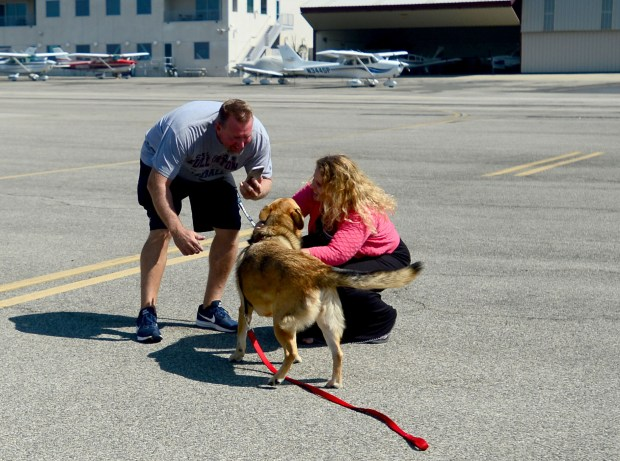 Scott Bibee takes a picture of Emery and his wife, Shellie, as the two reunite Thursday, Sept. 7 at Pacoima's Whiteman Airport. Emery landed in Southern California after being flown from Corpus Christi, Texas, by Pilots N Paws volunteer Brett James. (Photo by Dean Musgrove, Los Angeles Daily News/SCNG)