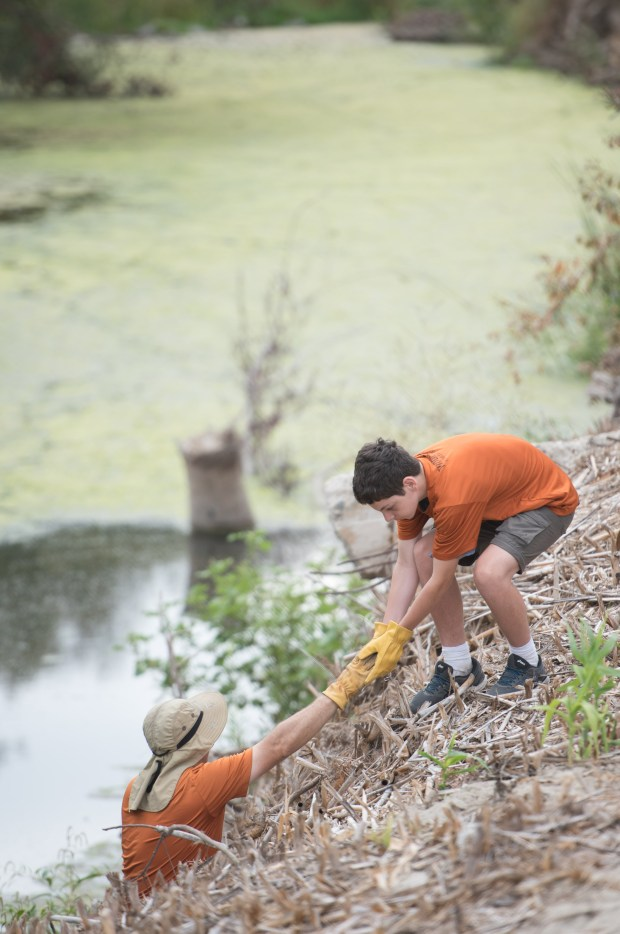 Dan Kutcher hands trash to his son Matthew Kutcher as the two from Dana Point help clear trash from the banks of Aliso Creek during the creek cleanup on the creek near Aliso Viejo Middle School on Saturday, September 16, 2017 in Aliso Viejo, Calif. (Photo by Josh Barber, Contributing Photographer)