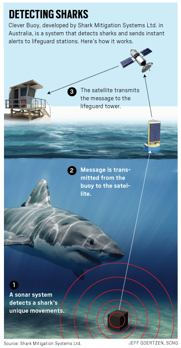 OCR-L-SHARKS-0923