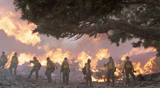 "The Granite Mountain Hotshots save an ancient tree in ""Only the Brave.""i"