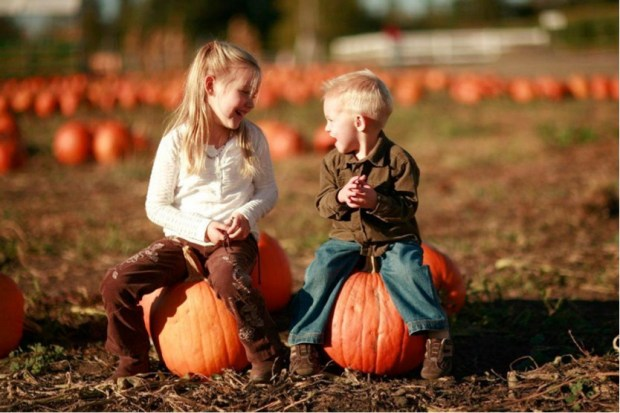 "Bring the family out to ""Boots on the Beach Country Pumpkin Patch,"" for a weekend of festive activities including pumpkin picking at the patch, crafts, inflatables, and seasonal treats and drinks. (Photo Courtesy of Newport Dunes)"