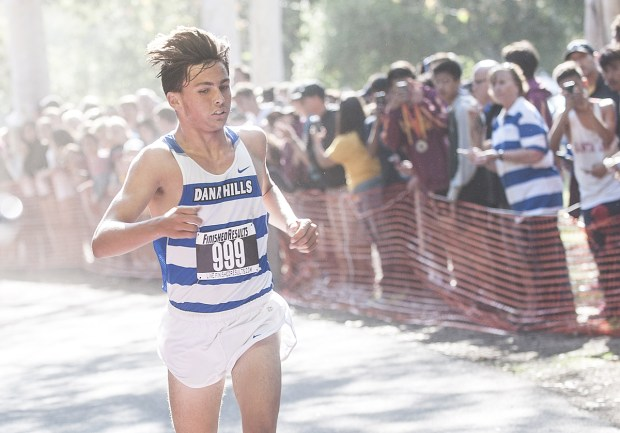 Jack Landgraf of Dana Hills wins the 2016 Boys Sweepstakes race at the Orange County Cross Country Championships at Irvine Regional Park in Orange, on October 15, 2016. (Photo by Nick Agro, Orange County Register/SCNG)