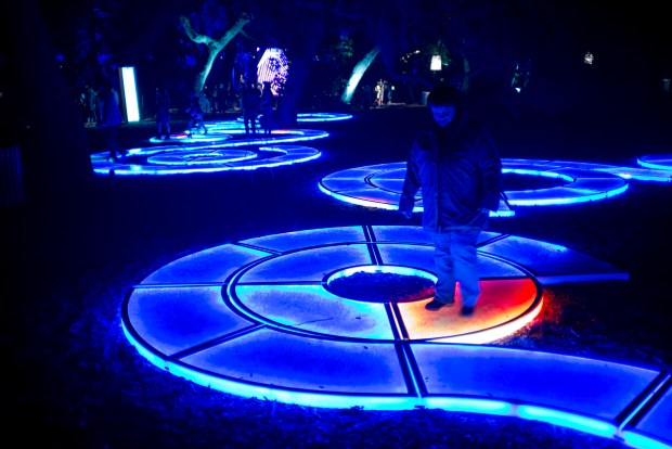 Visitors walk through the Enchanted Forest of Lights at Descanso Gardens Saturday evening. The show featuring interactive light displays and music runs through January 7th. ( Photo by David Crane, Los Angeles Daily News/SCNG)