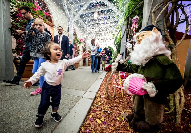 One-year-old Isla Vidal, of La Palma, reaches for an elf figurine at The Mission Inn Hotel & Spa during 25th annual Festival of Lights switch-on ceremony in Riverside on Friday, Nov. 24, 2017. (Photo by Watchara Phomicinda, The Press-Enterprise/SCNG)